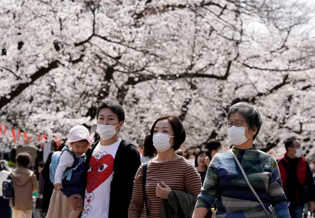 беседки япония сегодня фото должное