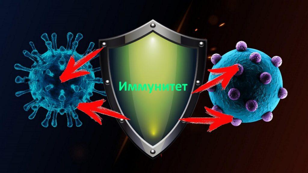 есть ли иммунитет к коронавирусу