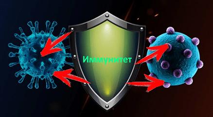 Клеточный иммунитет к коронавирусу
